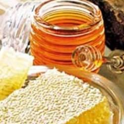 Мед надежнее и целебнее антибиотиков
